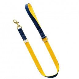 luxury yellow dog lead and collar doggie apparel