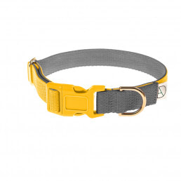 yellow dog collar / grey dog collar