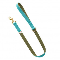 sky blue lead / olive green lead