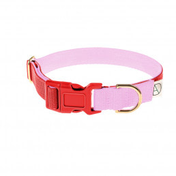 red dog collar / pink dog collar